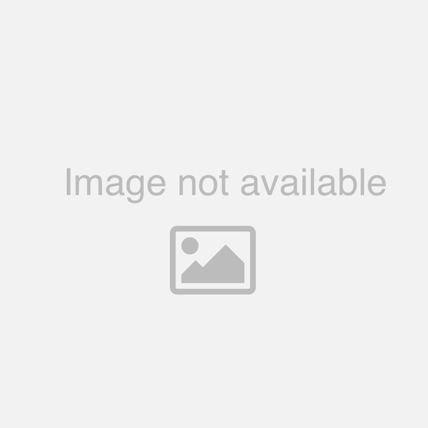 TGT8429: Rub Rail Splice for Thomas C2